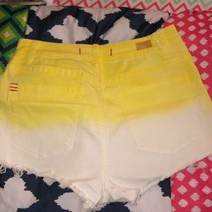 Urban Outfitters 2 Tone Shorts